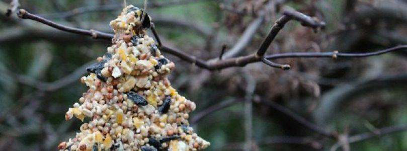 Bird-feeding Ornaments