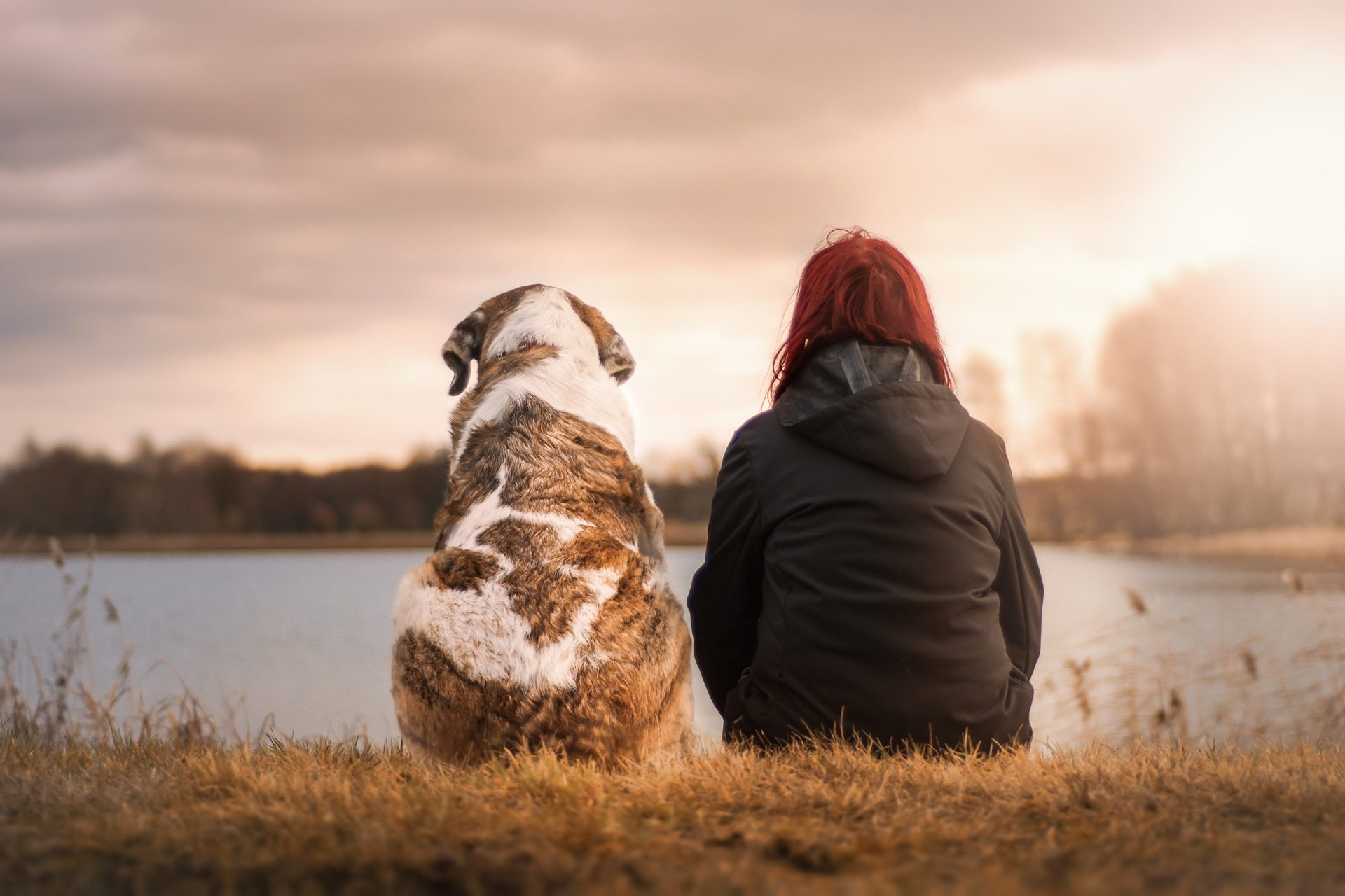 Turns Out People Would Rather Spend Time with Dogs than other people