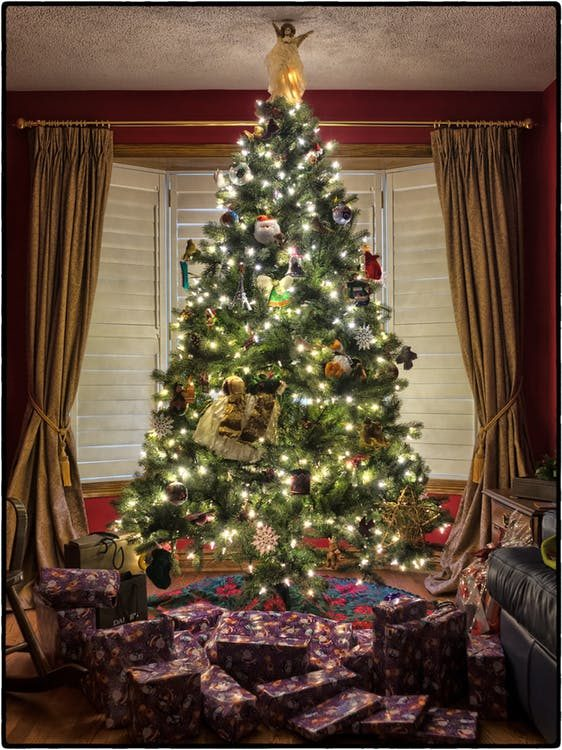When Do You Put Up Your Christmas Tree