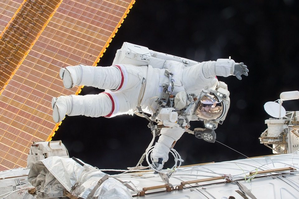 A Stuffed Toy Dog and Its Job on the International Space Station