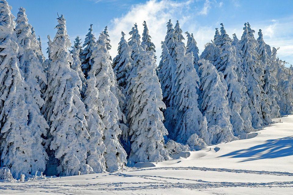 Pennsylvania Weather Records