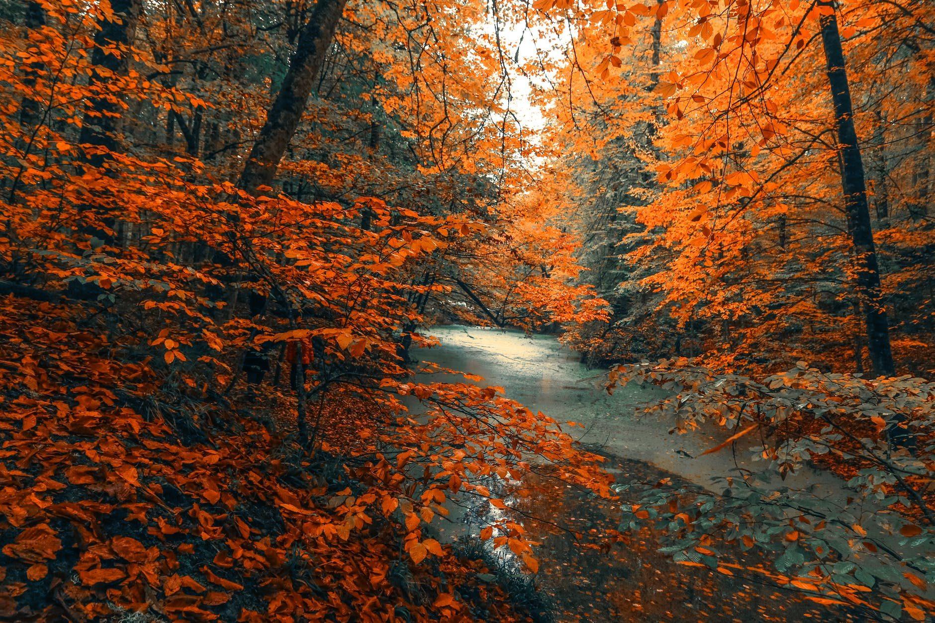 Cooler Days…Fall Adventures